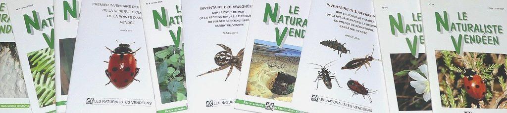 Bandeau-Publications