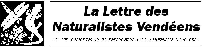 logo-lettre-NV