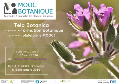 mooc-botanique
